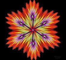 'Just A Kinda Pretty FlowerishThingy' by Scott Bricker