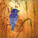 Blue bird by Blended