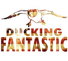 DUCKING FANTASTIC Photographic Print