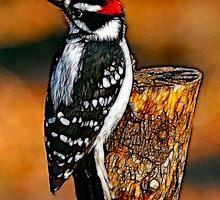 Downing Woodpecker in Batik by laxwings