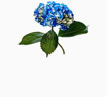 Blue Hydrangea With Leaves Womens Fitted T-Shirt