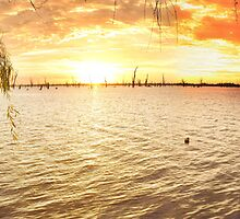 Yarrawonga Pano Lake Mulwala by Simon Dallinger