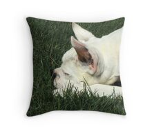 White boxer dog sleeping Throw Pillow