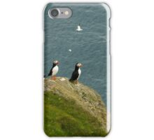 puffins at unst iPhone Case/Skin