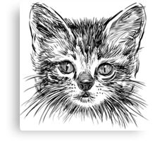 Cat art Canvas Print