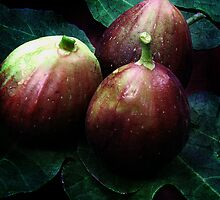just figs by picketty