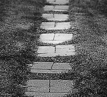 Stone Path by Rebecca  Rowe