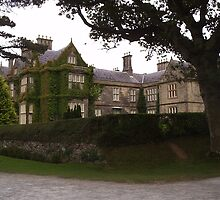 Muckross House Killarney County Kerry Ireland by James Cronin