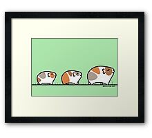 Mother Guinea-pig with Babies Framed Print