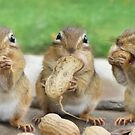 "Say ""Cheese"" (or Peanuts) by Lori Deiter"
