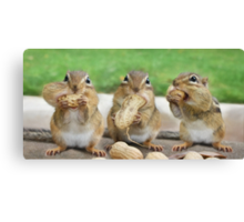 "Say ""Cheese"" (or Peanuts) Canvas Print"