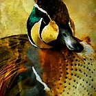 There a Duck by Bunny Clarke