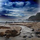 Cape Schanck by for the love photography