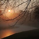 No 400: Hoping for further beautiful morning sunshine by jchanders