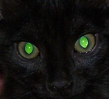Look Into My Eyes by Lisa Taylor