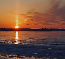 Whiskey Sunset On Ice by Joanne  Bradley