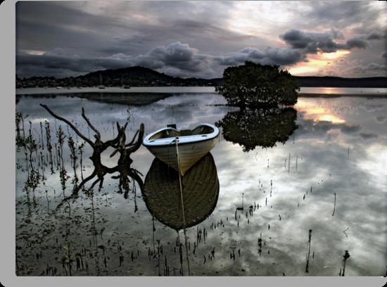 A Days Reflection by Annette Blattman