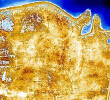continent6 by Gunter Wenzel