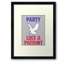 Party Like A Patriot Framed Print
