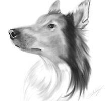 Dog Portrait by CVill