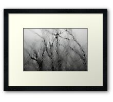 Windscream Framed Print