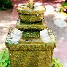 Fountain, Tucson, AZ by rmenaker