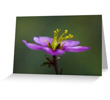 Dreamy Mauve Greeting Card