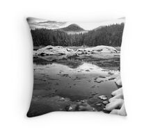 a cold day in the bay Throw Pillow