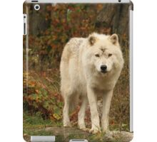 At the edge of the forest iPad Case/Skin