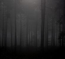 Spooky Trees by badaz123