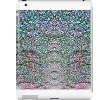 Illustrated Symmetry iPad Case/Skin