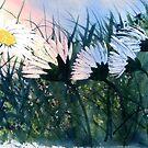 """Dance of the Daisies"" by Glenn  Marshall"
