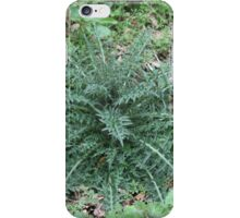 Spear Thistle. iPhone Case/Skin