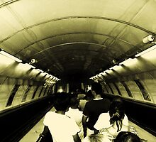 Metro by Metadea