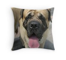 Neapolitan Mastiff dog Throw Pillow