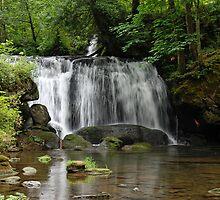 whatcom waterfalls by genielamb