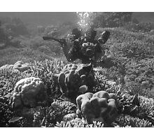 Papua New Guinea - Diver/Photographer Photographic Print