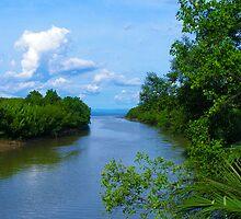Calatrava River, Negros Occ., Philippines by Eleu Tabares