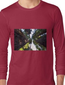 Among the Redwoods Long Sleeve T-Shirt