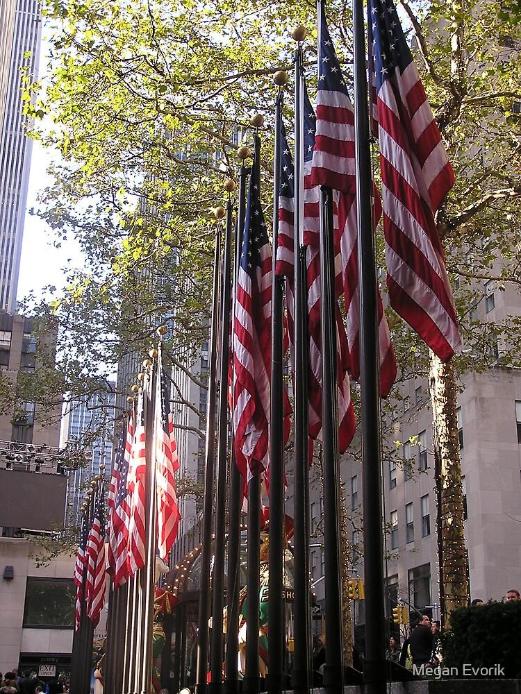 I Pledge Allegiance ... by Megan Evorik