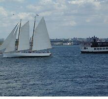 Clipper and Ferry by Karen Checca
