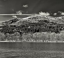 Looking onto the loch by FLYINGSCOTSMAN