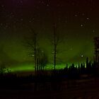 Me and my Auroras by peaceofthenorth