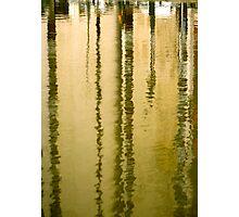 Amber streaks Photographic Print