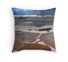 Life cycle of the Ocean Throw Pillow