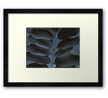 Black & Blue Framed Print