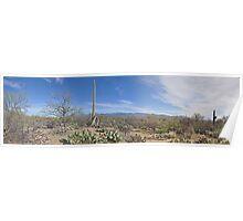 The Awesome Arizona Desert  Poster