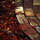 The Red Brick Path by Deon Van Den Berg