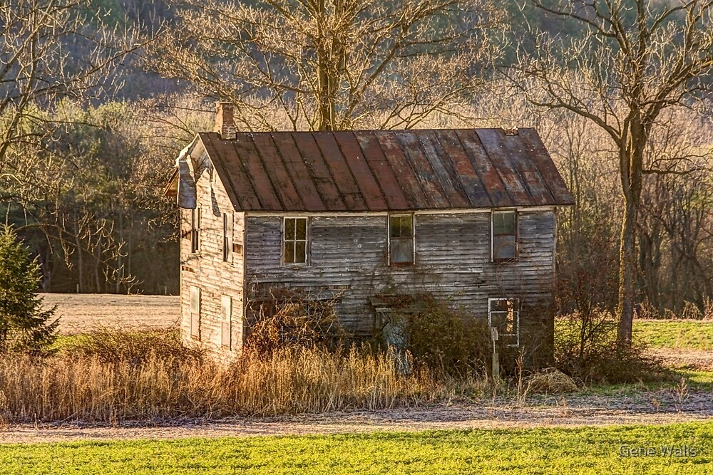 The Forgotten Farmhouse Is Showing Its Age by Gene Walls