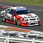 Bathurst 2008 by Jamie Rutter